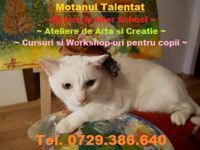 Motanul Talentat