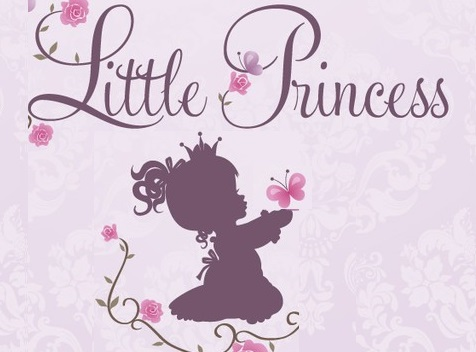 Gradinita & Cresa Little Princess